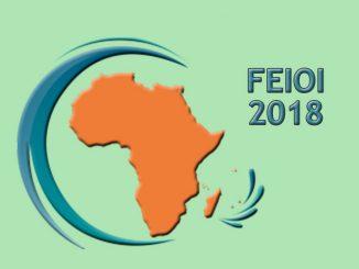 Conquérir Le Marché Africain : Le Sujet Phare Du FEIOI