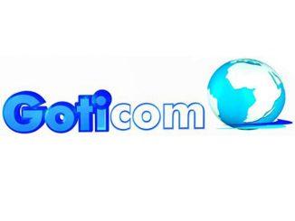 TIC : Goticom Dénote L'exportation Massive Des Informaticiens